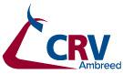 CRV Ambreed Jobs